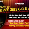 Bee Gees Gold Album